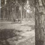 Co. 376, SCS-24 Amelia, VA - Recreation Area